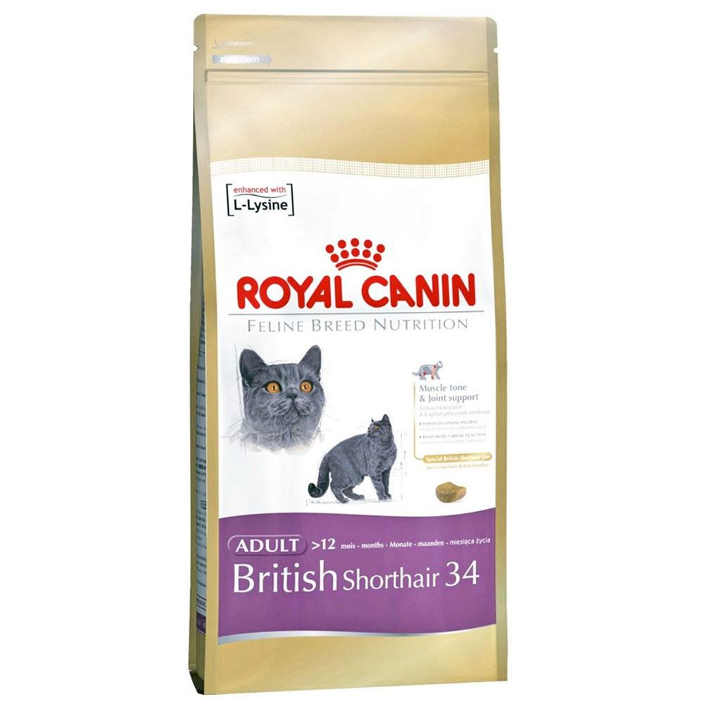 royal canin breed specific british shorthair adult cat food pet hero. Black Bedroom Furniture Sets. Home Design Ideas