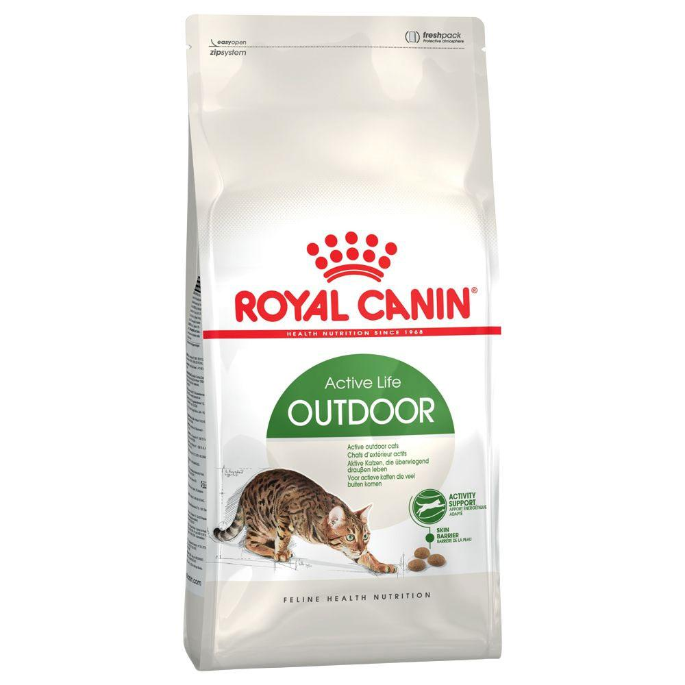 Dry Food Royal Canin Active Life Outdoor Cat Food