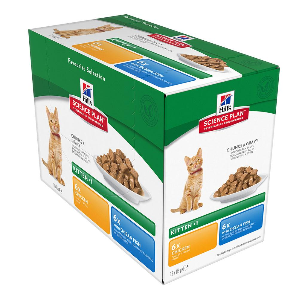 Hill's Feline Healthy Development Kitten Multipack Pouch (12x85g)