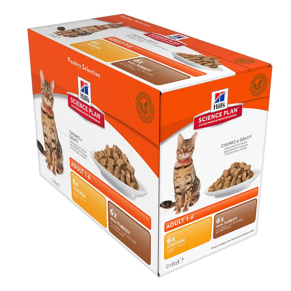 Hill's Feline Adult Chicken & Turkey Multipack