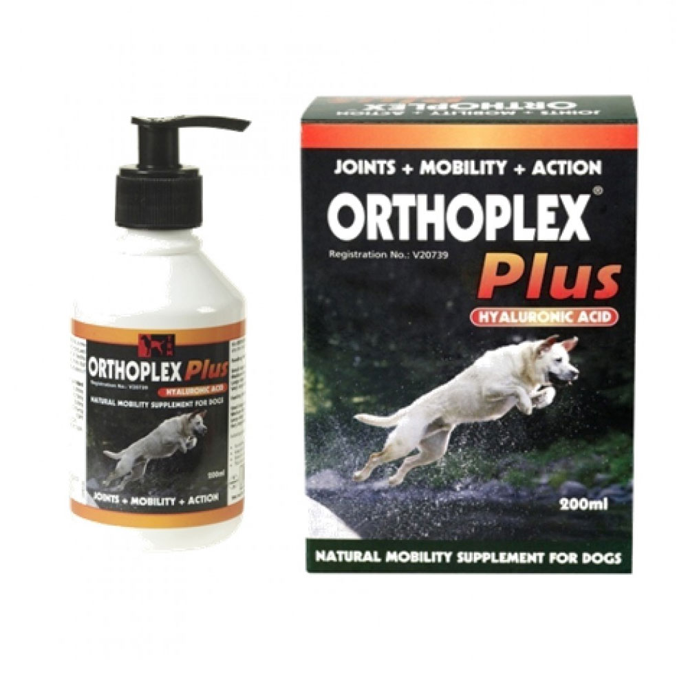Afrivet Orthoplex Plus for Dogs