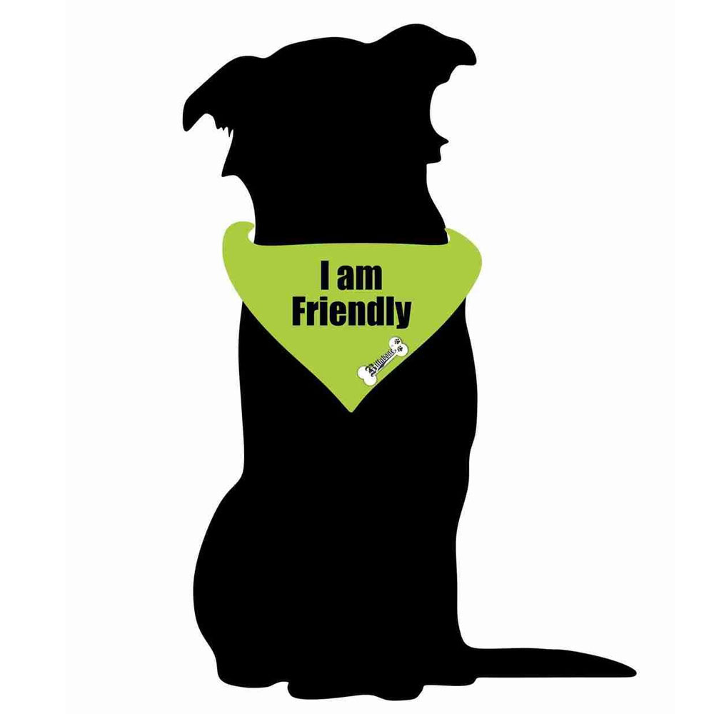 Billabone - I am Friendly Bandana