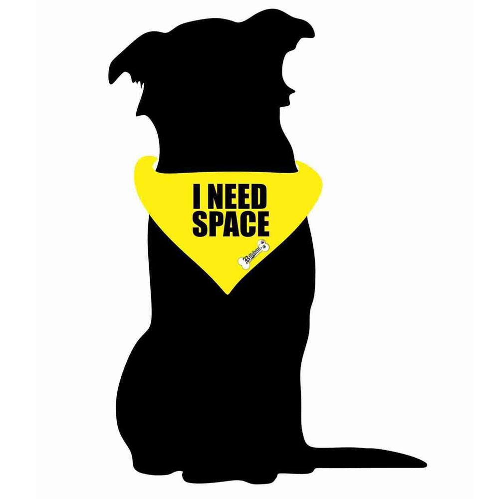 Billabone - I Need Space Bandana