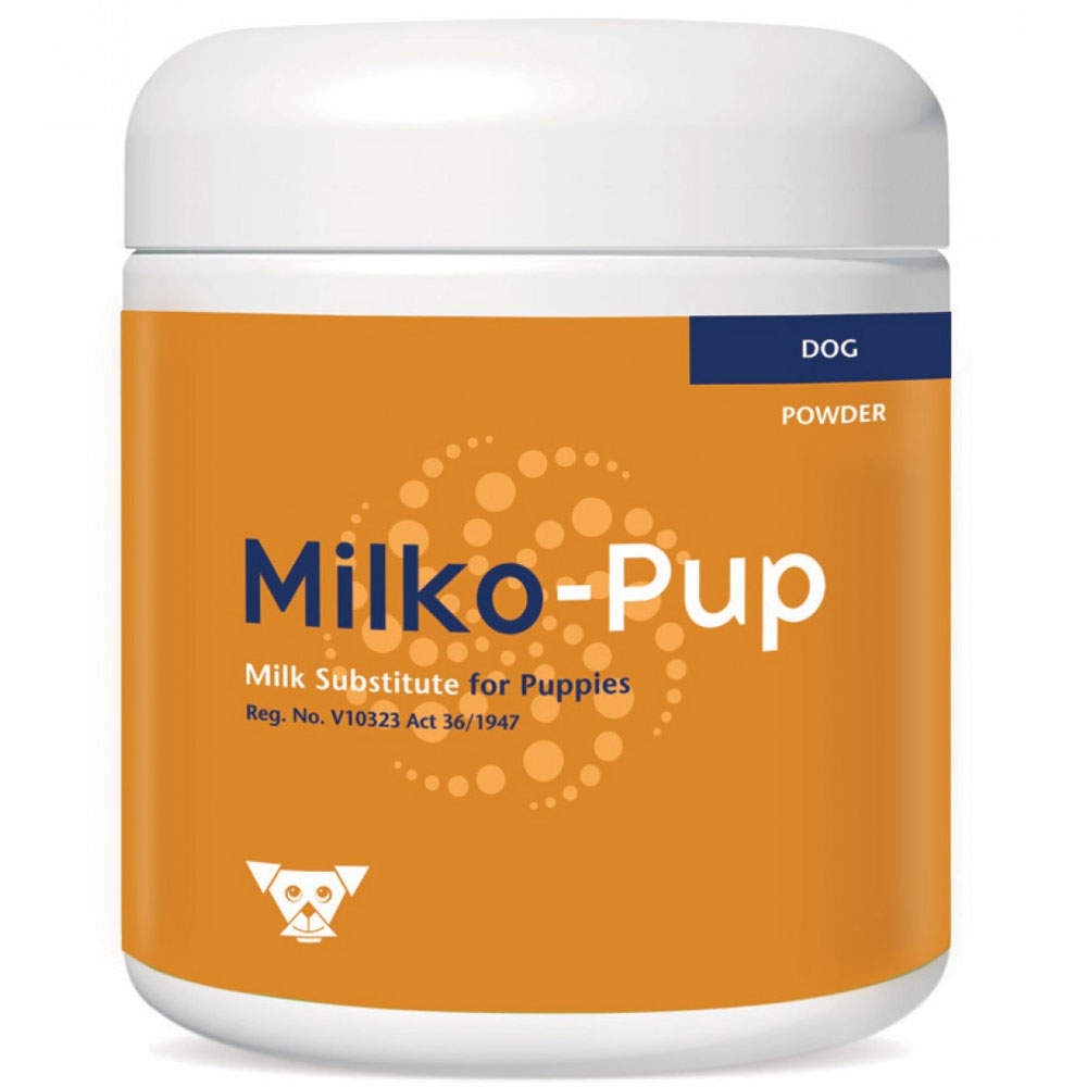 Kyron Milko Pup