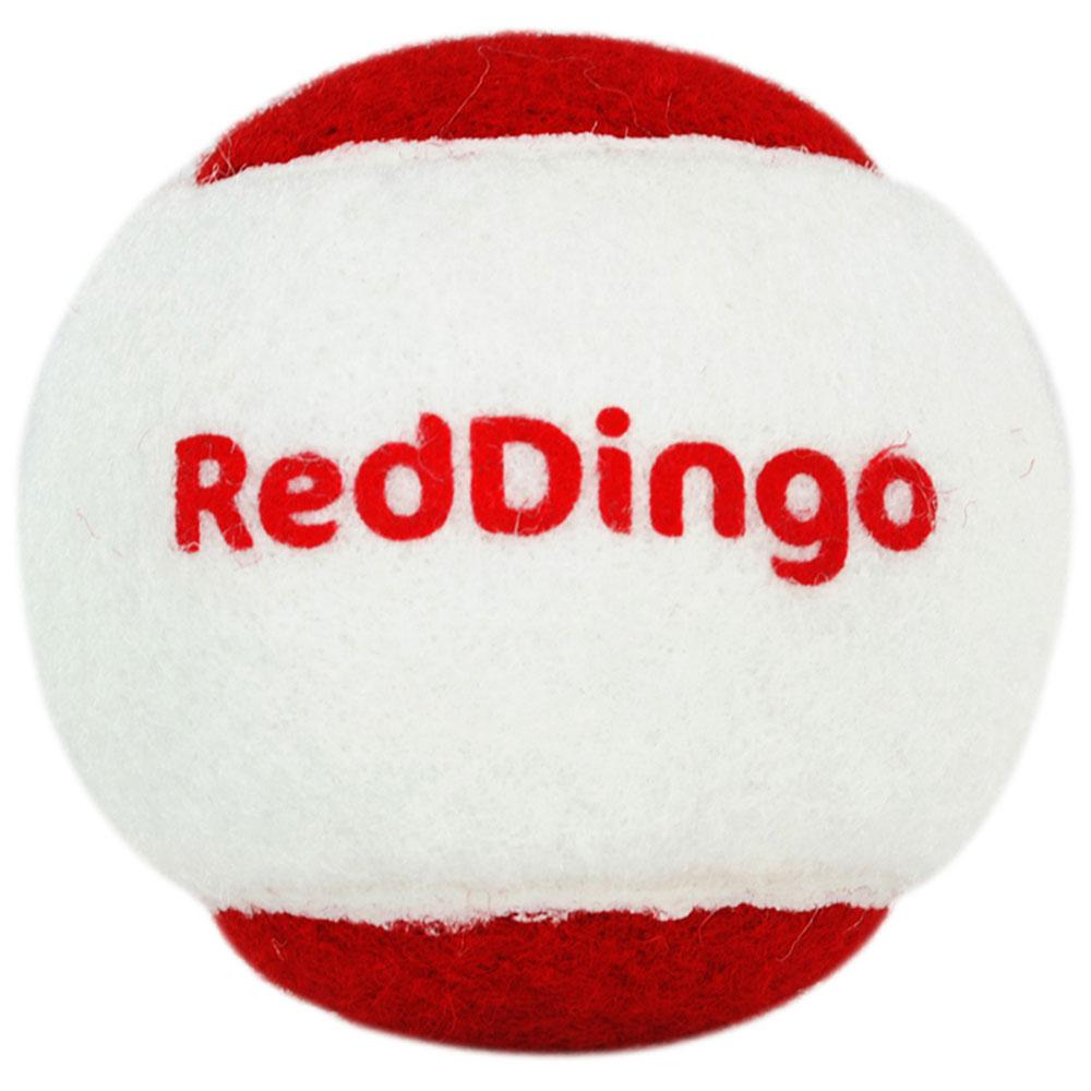 Red Dingo Rocketball
