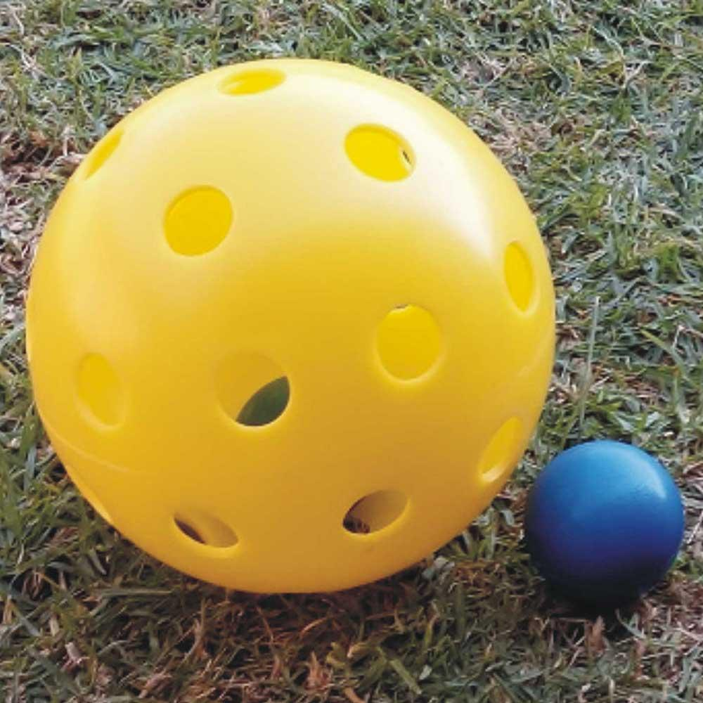 Robust a Ball Large Multi Ball for Dogs