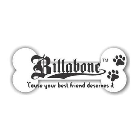 billabone