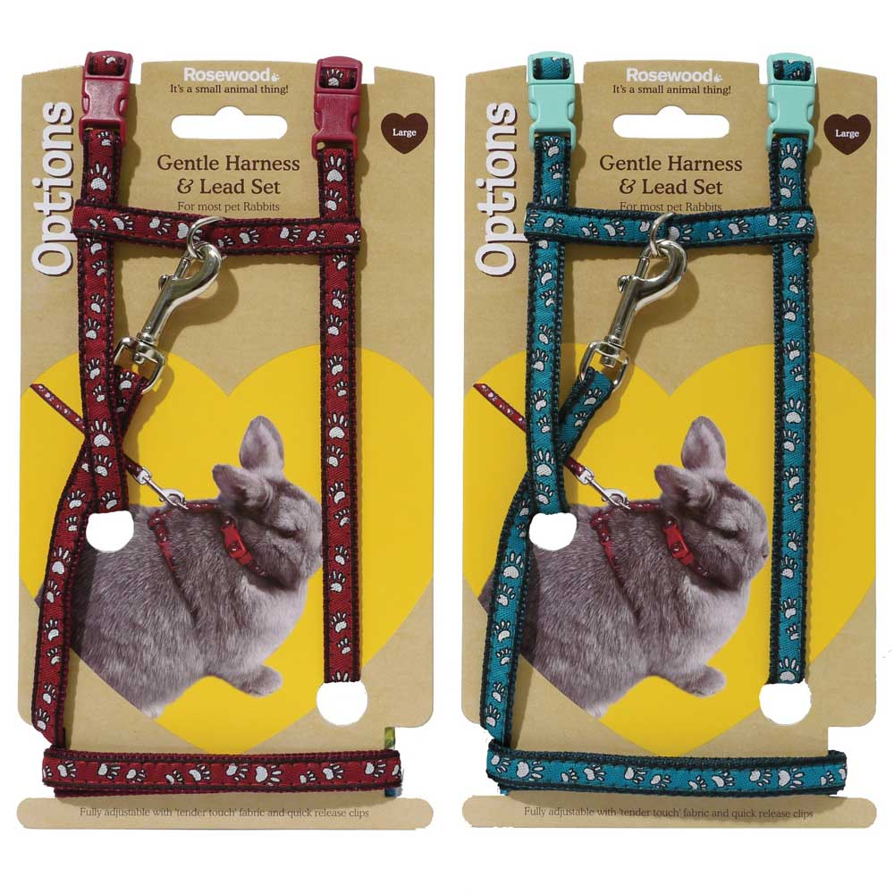 Rosewood Paw Print Harness and Lead