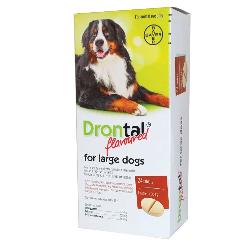 Bayer Drontal for Large Dogs